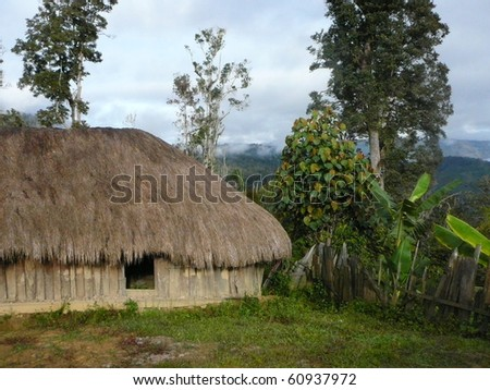 Village in Baliem - stock photo