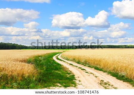 Village road in wheat field under cloudy sky - stock photo