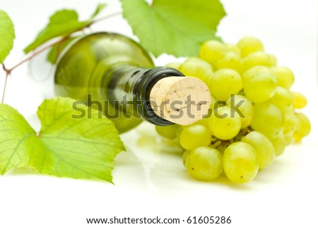 vine and bottle of wine - stock photo