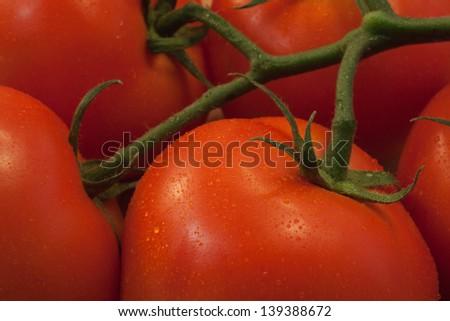 Vine Ripe Tomatoes close up - stock photo