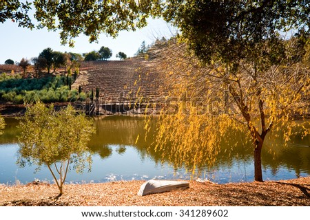 Vineyard and pond in Sonoma CA - stock photo