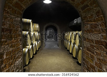 Vineyard and wooden barrels - stock photo