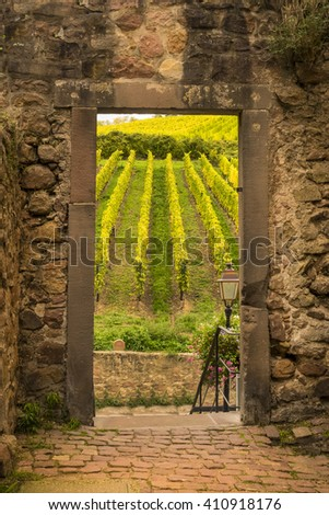 Vineyard in France seen through open door in old stone wall - stock photo