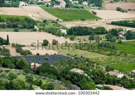 Vineyard in French landscape near Gordes - stock photo