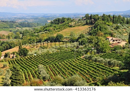 Vineyard landscape before harvest in Tuscany, Italy - HDR - stock photo
