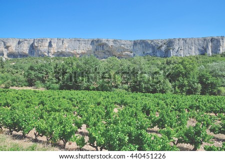 Vineyard Landscape in Provence,South of France - stock photo