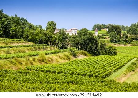 Vineyard landscape near Saint Emilion, region Bordeaux, France, Europe - stock photo