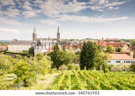 Vineyard near the cathedral of Bamberg - stock photo
