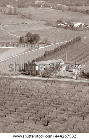 Vineyard outside Menerbes Village, Provence, France, Europe in Black and White Sepia Tone - stock photo