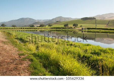 Vineyard Road and Lake - stock photo