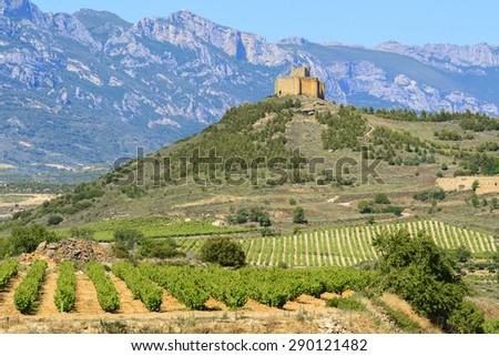 Vineyard with Davaillo castle as background, La Rioja - stock photo