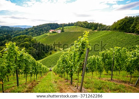 Vineyards along the South Styrian Wine Road in autumn, Austria Europe - stock photo