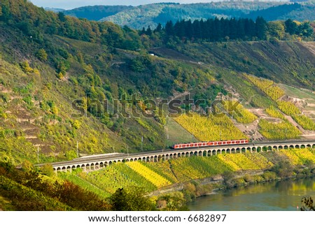 vineyards and forest along the mosel river in germany with a train passing through - stock photo