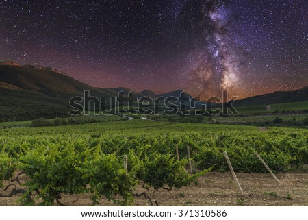 Vineyards and mountains on the background of the starry sky. - stock photo