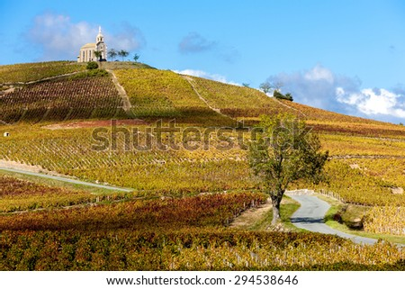vineyards grand cru in Beaujolais with a church, Fleurie, Rhone-Alpes, France - stock photo