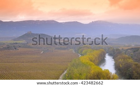 Vineyards in the province of La Rioja in Spain.  - stock photo