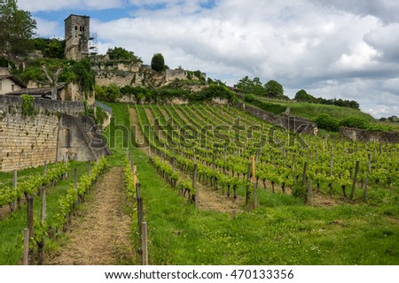 Vineyards of Saint-Emilion, one of the main red wine production areas of Bordeaux region, France