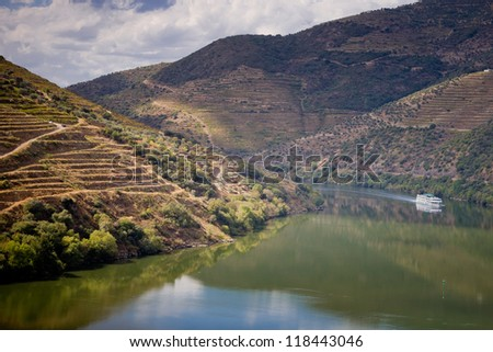 Vineyards of the Douro Valley, Porto, Portugal