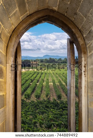 Vineyards Through The Wooden Door Frame With Arch   Perspective View Of  Grape Valley On European