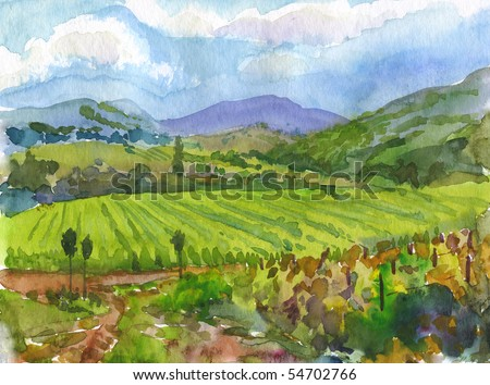 Vineyards. Watercolor. - stock photo