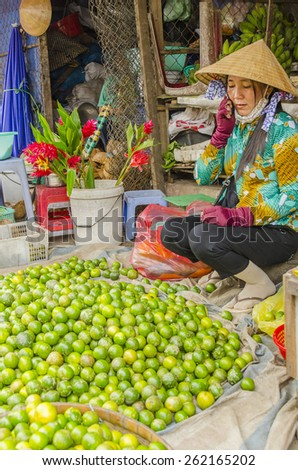 VINH LONG, VIETNAM, JANUARY 3, 2013: Local woman sells fruits along the street in Vinh Long market