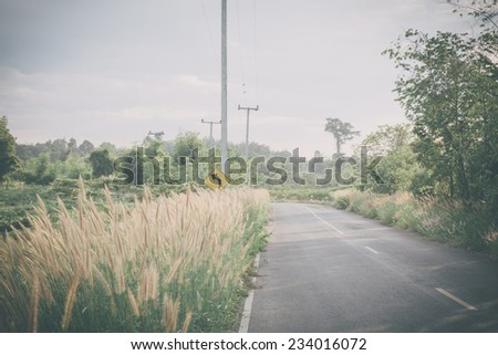 Vintage background road in forest - stock photo
