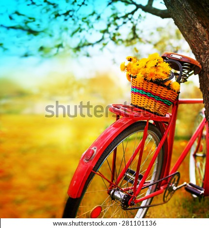 Vintage Bicycle with flowers on summer landscape background (toned picture) - stock photo