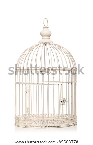 vintage bird cage isolated on white background - stock photo