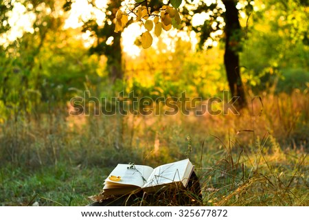 Vintage book of poetry outdoors with fallen leaves on it, under a tree in front of blurred sunset