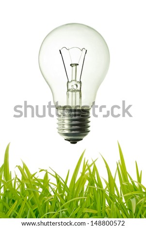 vintage bulb and green grass background