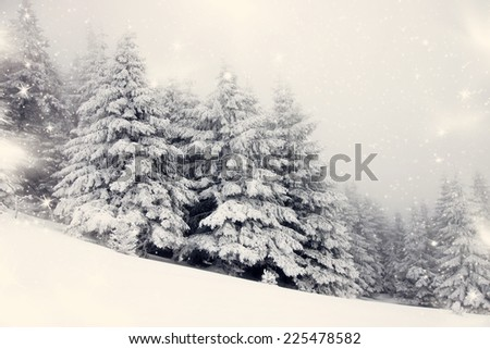 Vintage Christmas background with snowy fir trees  - stock photo