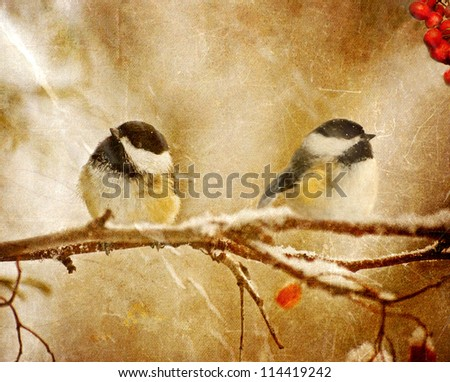Vintage Christmas card with adorable chickadees in the snow with copy space. - stock photo