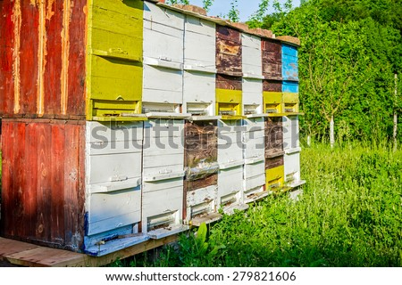 Vintage colorful beehive in a garden at sunny day
