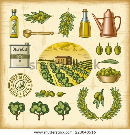 Vintage colorful olive harvest set - stock photo