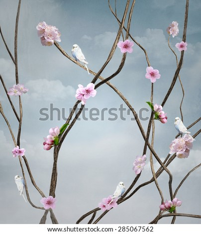 Vintage cover with birds and cherry blossom flowers - stock photo