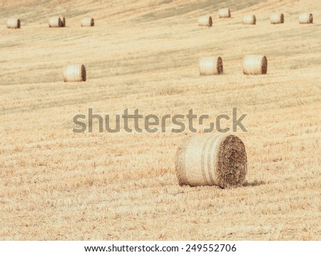 Vintage Effect Of Hay-Roll On Meadow Landscape After Harvest - stock photo