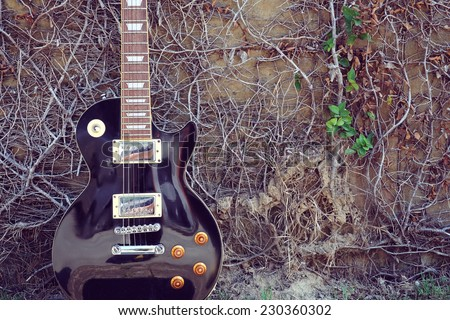 vintage electric guitar and small branch grunge wall - stock photo