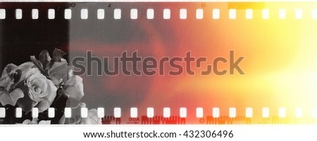 Vintage film strip frame with roses - stock photo