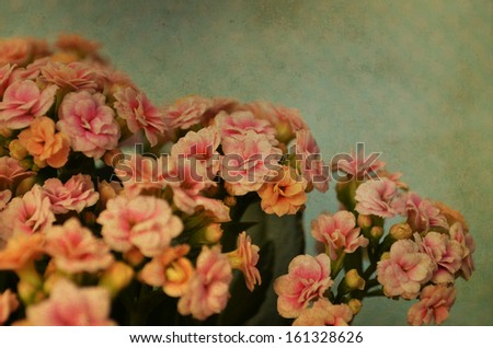 Vintage flowers pattern - stock photo