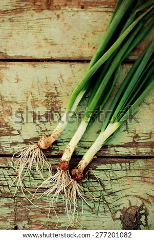 vintage fresh onion picture in wooden table, textured food background, some noise added for stronger vintage effect - stock photo
