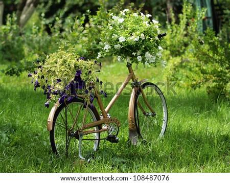 Vintage garden bicycle - stock photo