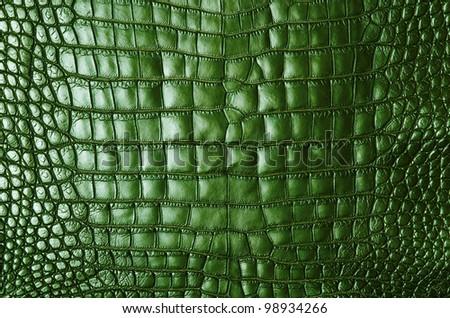 Vintage green crocodile skin texture. - stock photo