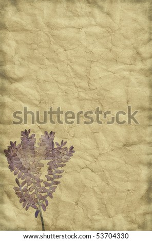 Vintage grungy yet tender looking paper background with washed out plant drawing theme. - stock photo