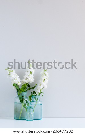 Vintage home decor background, white matthiola flowers in different blue glass bottles vases on a shelf by the wall - stock photo