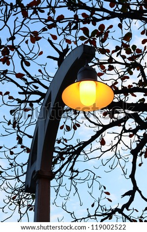 Vintage lamp at twilight