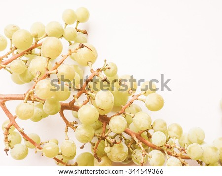Vintage looking White grape (Vitis vinifera) fruits, healthy vegetarian food - stock photo