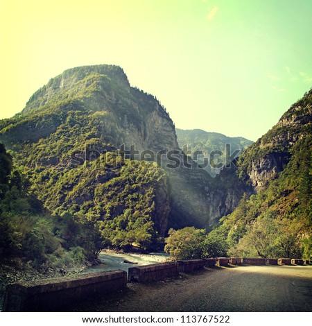 vintage nature background - stock photo