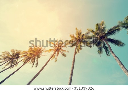 Vintage nature photo of coconut palm tree in seaside tropical coast - stock photo