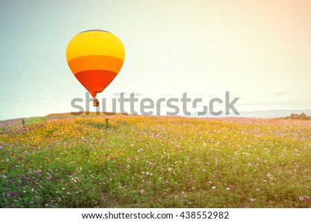vintage of Hot air balloon over cosmos flowers with blue sky