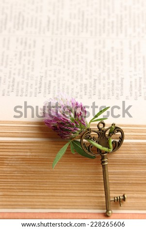 Vintage open book with old key - stock photo